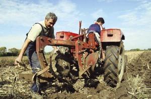 poljoprivreda-seljaci3-s