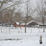 Zimska zaštita i čuvanje poljomehanizacije