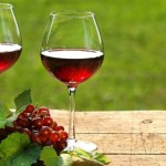 Vino – njegovo čuvanje, faze zrenja, odležavanje