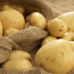 Zaštita krompira u skladištu tokom zime