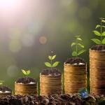 AGROEKONOMIST - Rezultati poslovanja poljoprivrednog gazdinstva 2