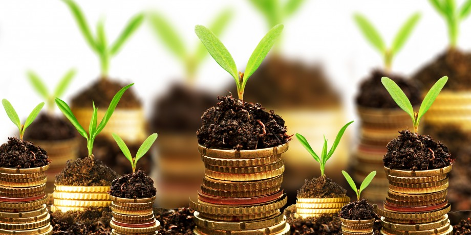 Agricultural-Financing-Gov't-Challenged-To-Regulate-Agricultural-Financing